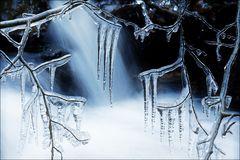 ~ frosty wing ~