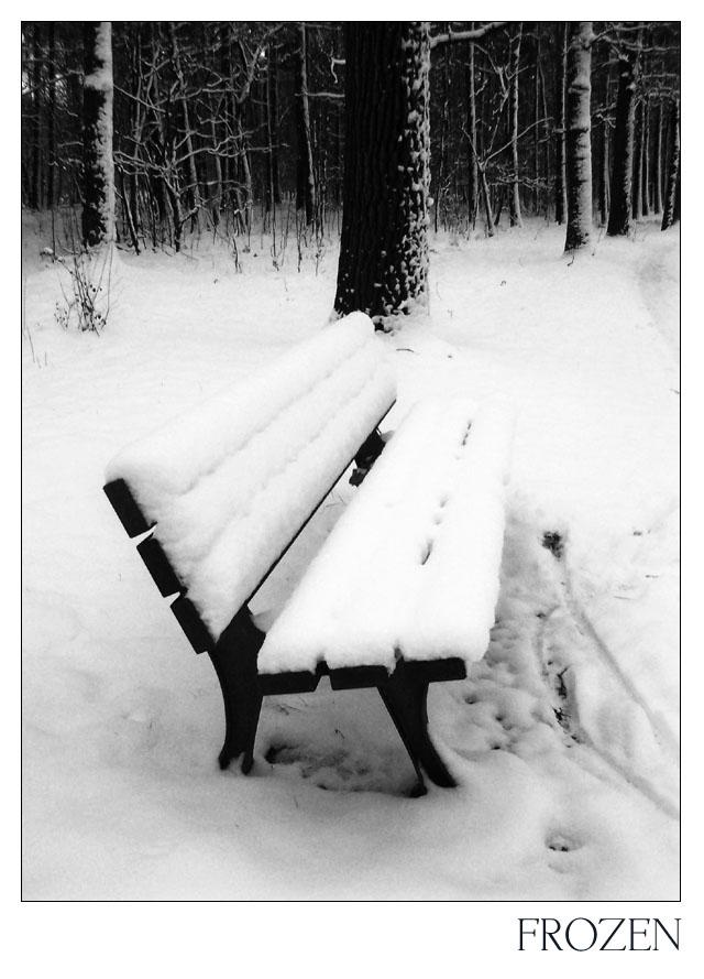 Frozen 04
