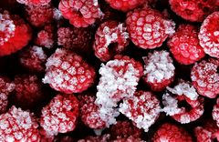 Frozen Berrys