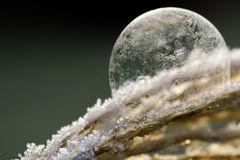 Frozen Bubble II