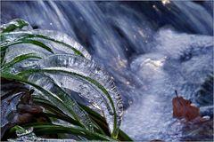 Frozen...