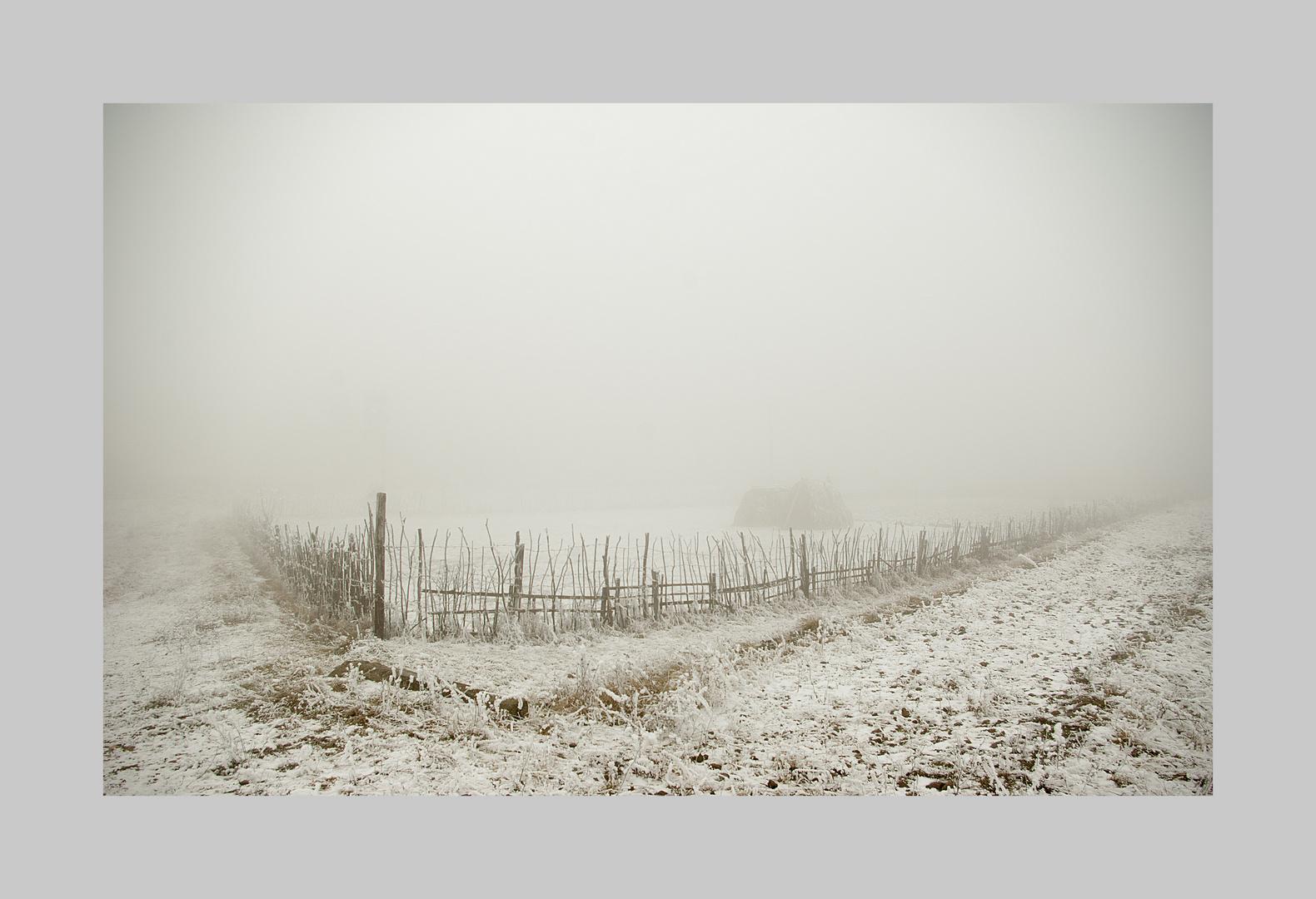 ..frozen day..