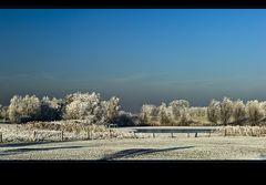 ~ Frozen VI ~