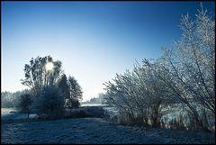 ~ Frozen VIIII ~