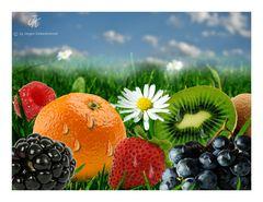 Fruchtwiese..