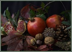 Früchte aus Neugablonz