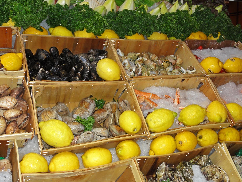 Früchte vom Land & Meer