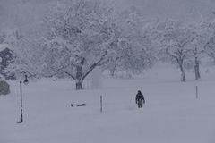 ...früh morgens im Schneegestöber...