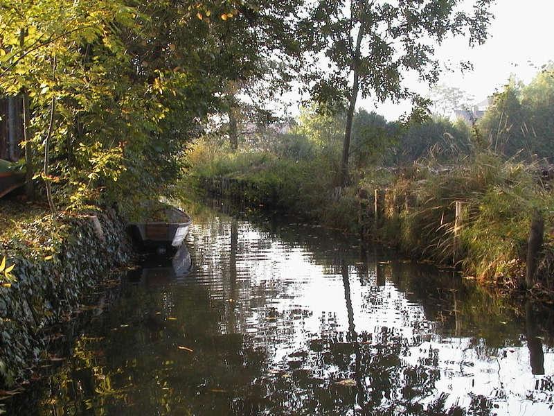früher Herbst im Spreewald