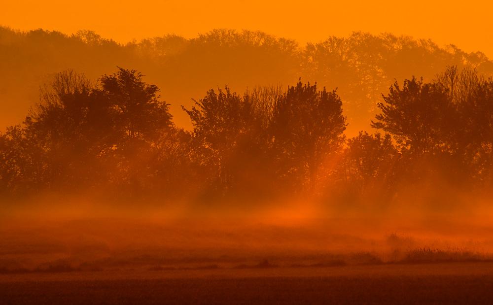 Frühes Morgenlicht