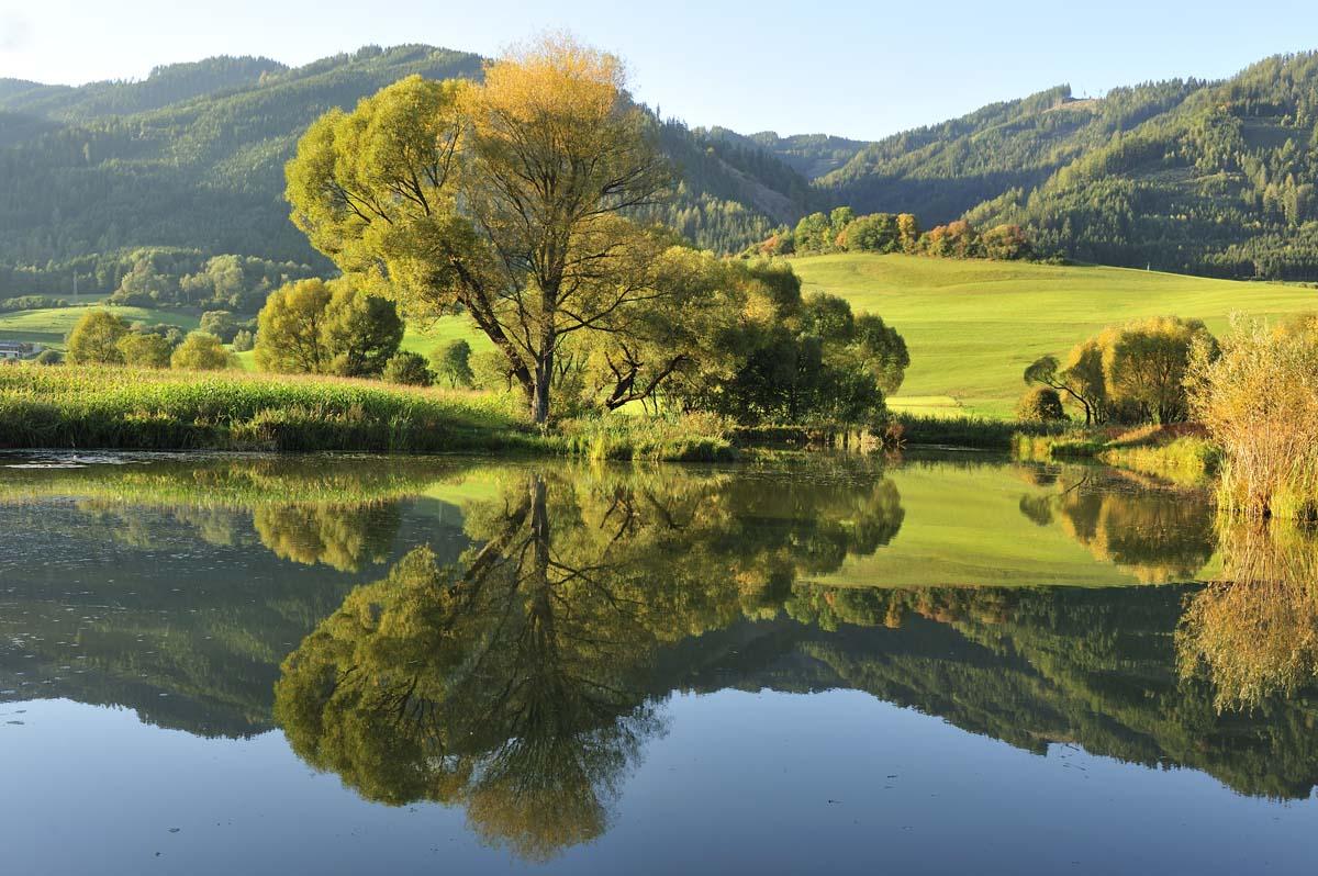 Frühherbstfarben am Rattenberger Teich