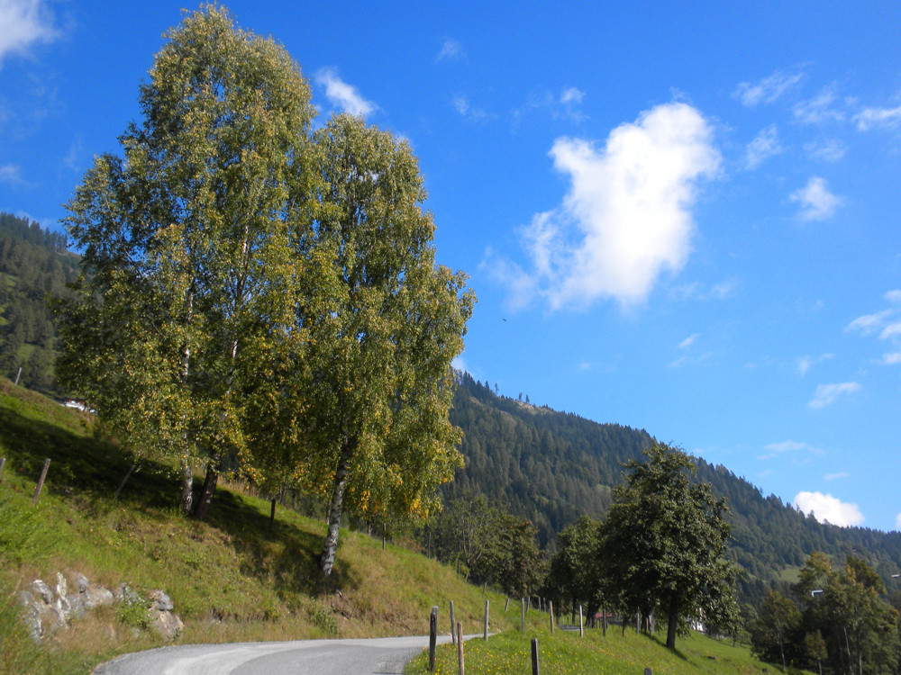 frühherbstliche Berglandschaft