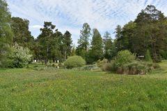 Frühjahr im Botanischen Garten von Rostock (1)