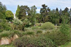 Frühjahr im Botanischen Garten von Rostock (2)
