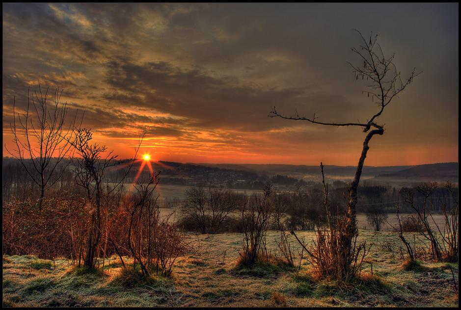 frühlicht
