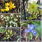 Frühligsboten