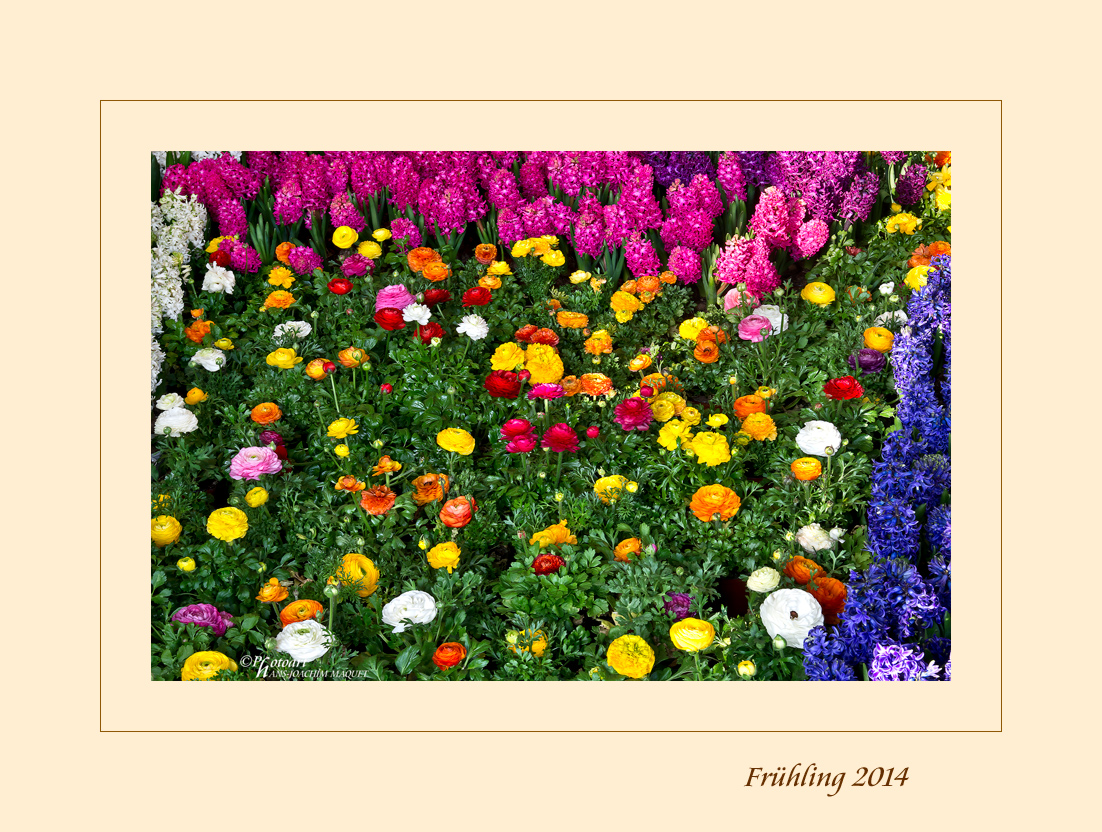 Frühling 2014