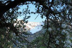 ...Frühling (4)...