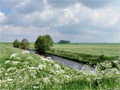 Frühling am Dollart in Ostfriesland.