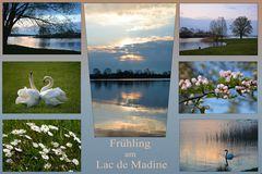 Frühling am Lac de Madine