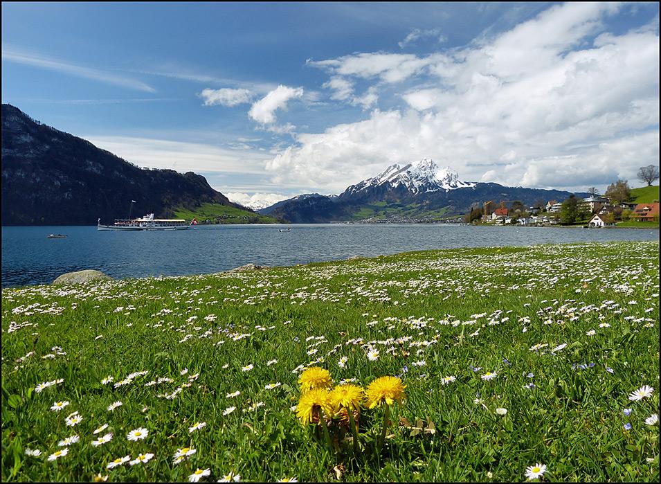 Frühling am See