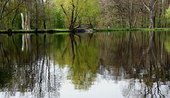 Frühling am Valznerweiher