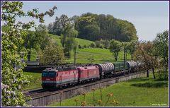 Frühling an der Westbahn