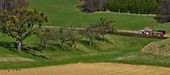 Frühling auch in der Landwirtschaft!