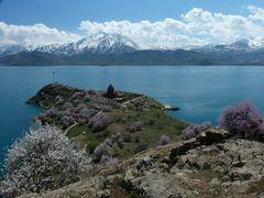 Frühling auf der Insel Akdamar.