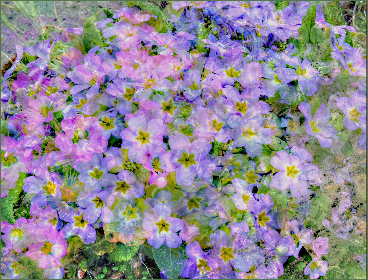 Frühling auf der Wiesen . Primavera sobre los campos