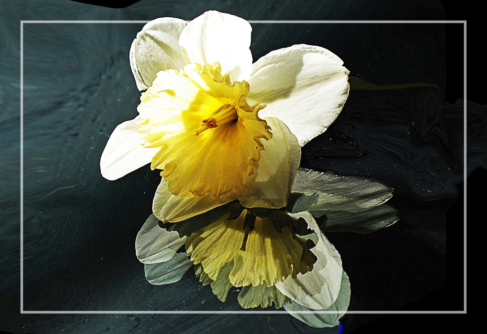 Frühling auf Glas