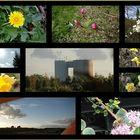 ... Frühling, Frühling wird es nun bald...