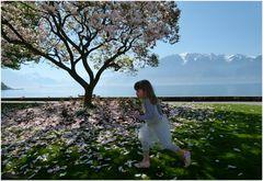 ...Frühling im Ballettröckchen