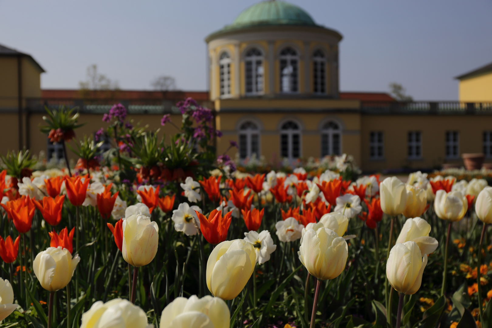 Frühling im Berggarten