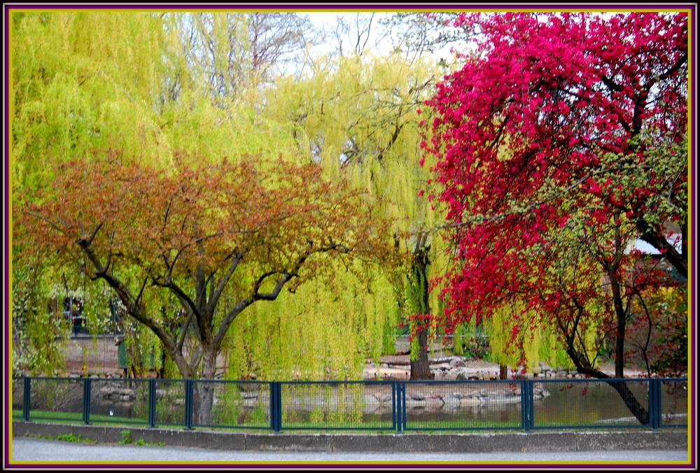 Frühling im Berliner Zoo