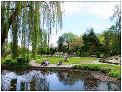Frühling im Botanischen Garten