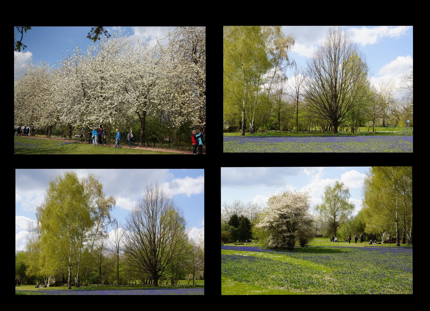 Frühling im Britzer Garten ...