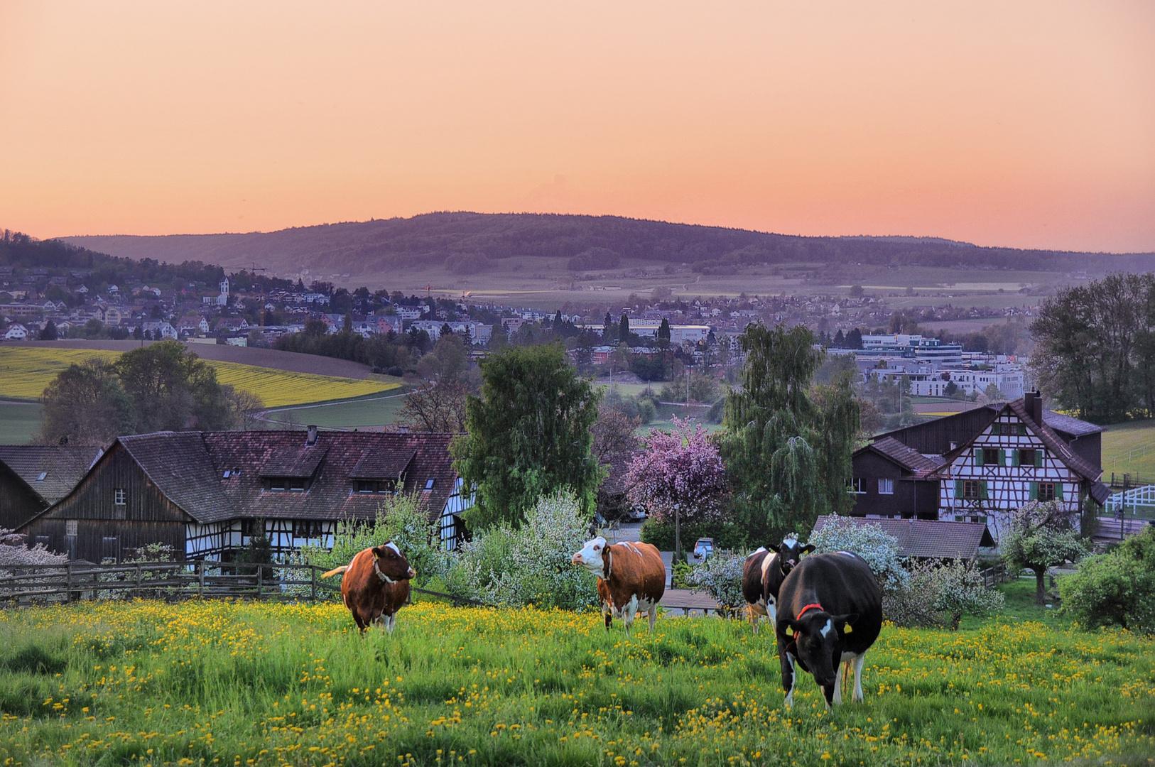 Frühling Dorf