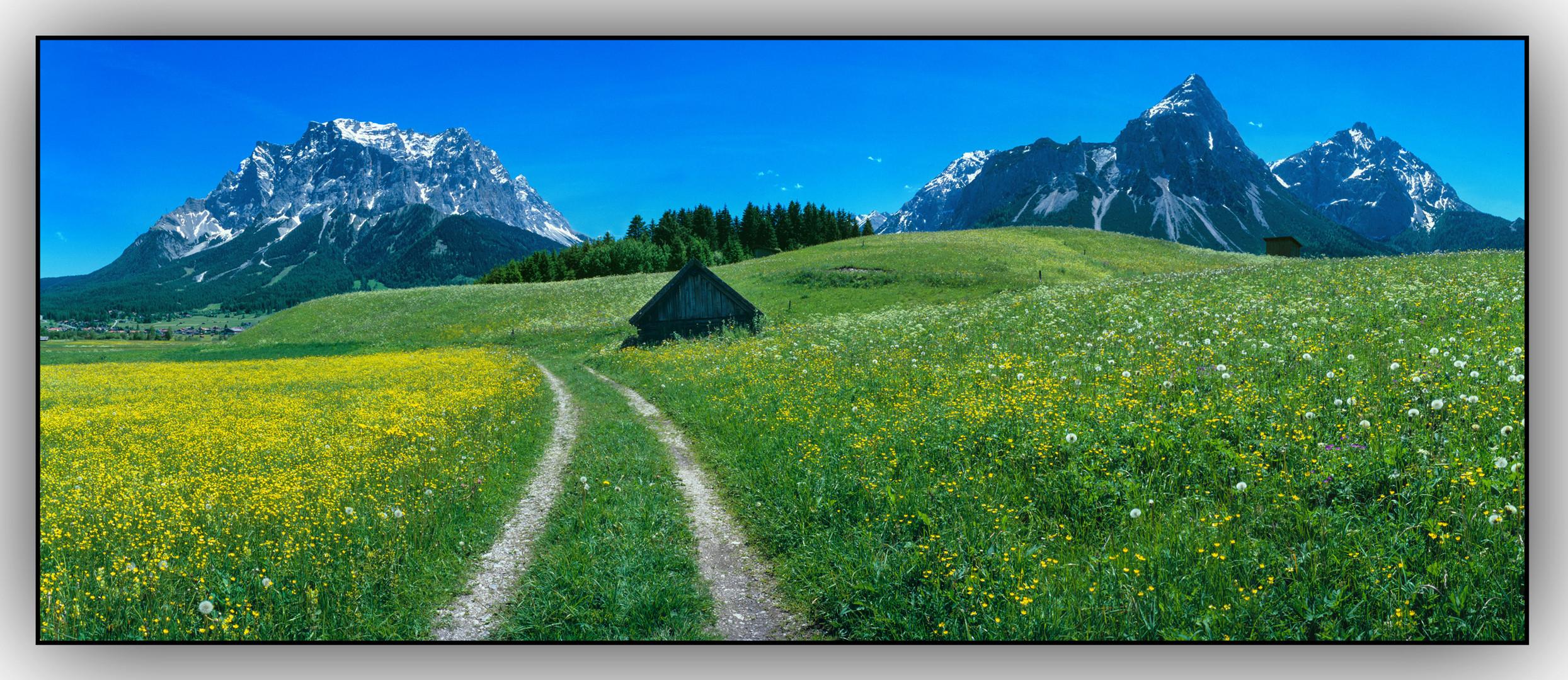 Frühling im Ehrwalder Kessel-Mit Blick auf Zugspitze und Sonnenspitz