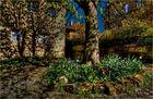 Frühling im Frankenland
