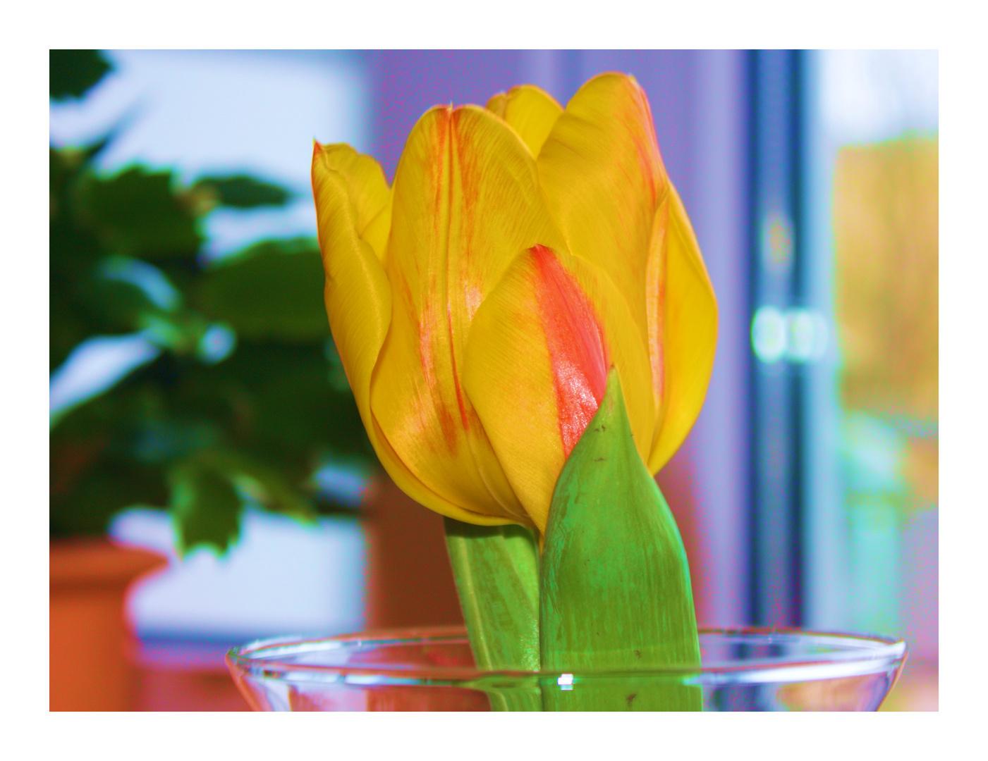 Frühling im Glas 2