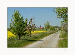 Frühling im Havelland