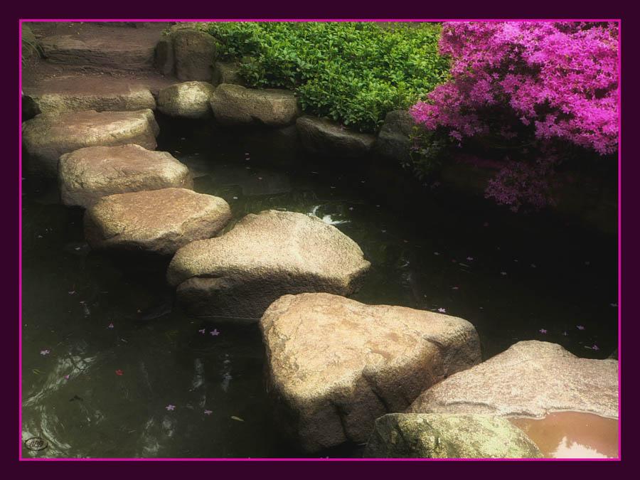 Frühling im japanischen Garten