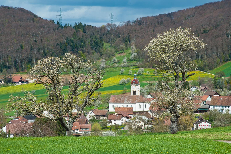 Frühling im Jura