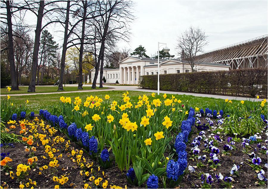 Frühling im Kurpark