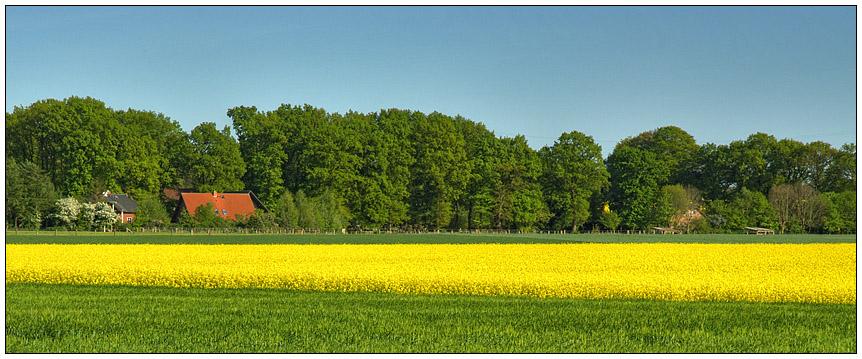 Frühling im Norden
