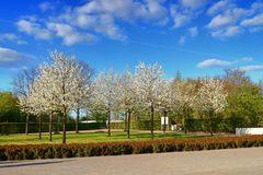 Frühling im Nordsternpark in Gelsenkirchen