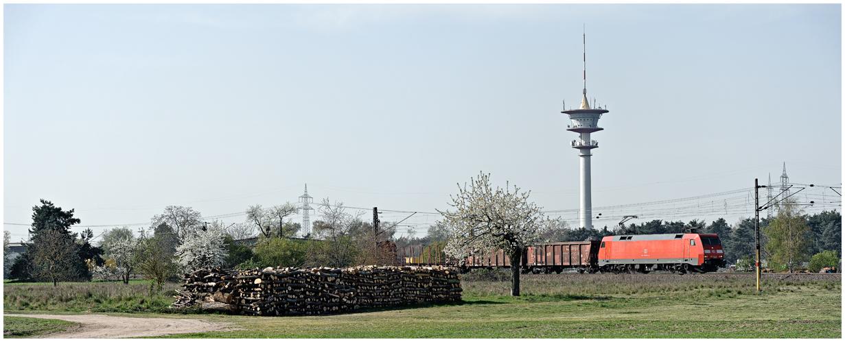Frühling im Rheintal