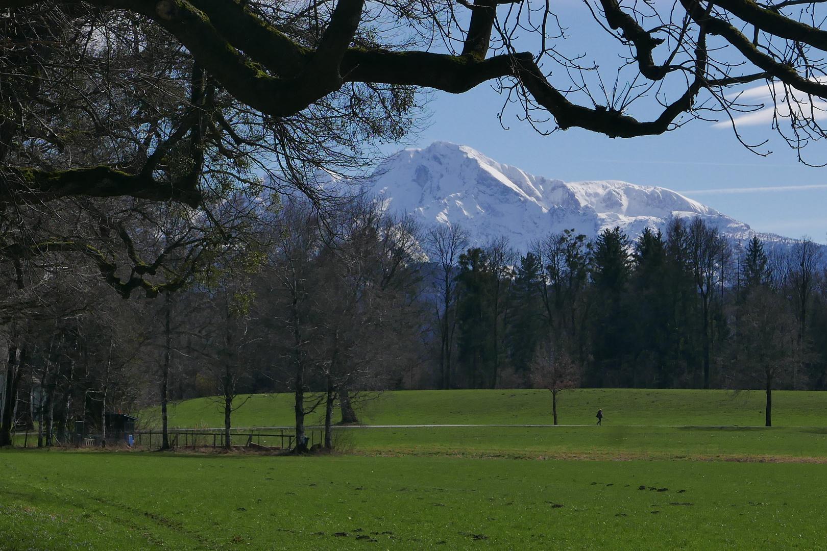 Frühling im Salzburger Land