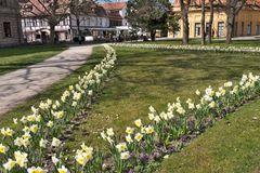 Frühling im Schlossgarten